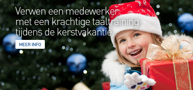 KERST-BANNERS-LERIANSITE-2014-NL2